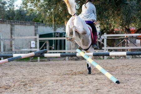 Back side of Girl riding a white horse jumping a guided obstacle during equestrian school training. Equestrian school training concept to learn the horse to jump properly the obstacle
