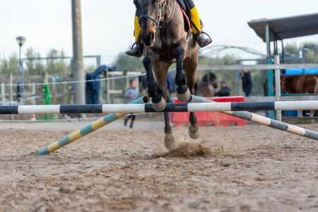 Horse jumping an obstacle during training session. Equestrian school training concept. Horse that jumps an obstacle with giudes