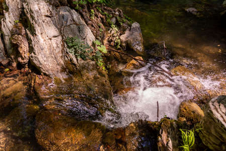 Close Up of Bubbling Water in a litthe cascade in a river in a forest on blurred background