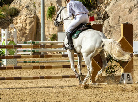 white horse jumping the obstacle durign a five star competition on blurred background