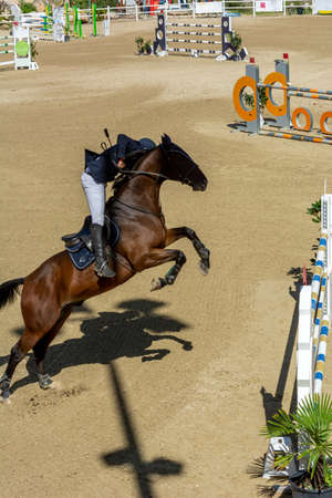 brown horse jumping the obstacle durign a five star competition in Italy on blurred background