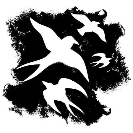 Seagull grunge