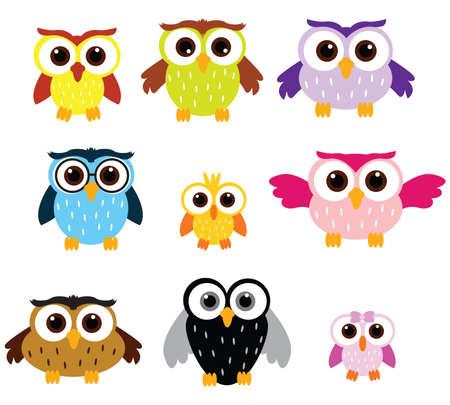aves caricatura: Familia Owls