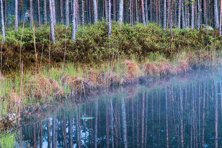 tarn: Mist on the tarn Stock Photo