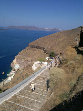fira: Fira Donkeys in Santorini, Greece