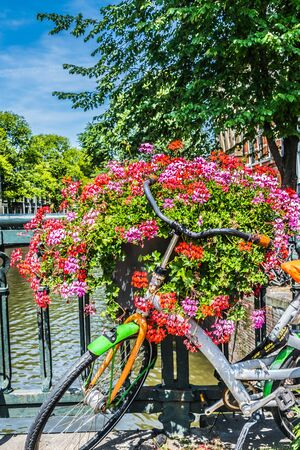 Typical bicycle and petunia flowers on a bridge over the canal. Amsterdam