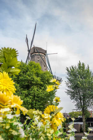 The De Gooyer mill behind the flowers. Focus in the background.