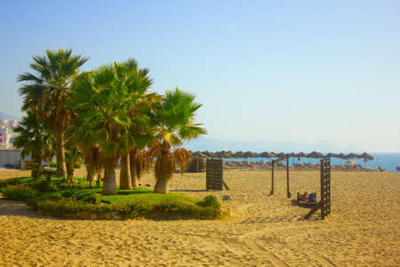 Palm Trees on a Beach in Fuengirola, Andalusia Region in Spain photo