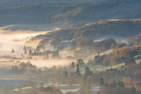 Tree's in rural valley covered in a layer of lingering mist on a frosty Autumn morning in the Lake District.
