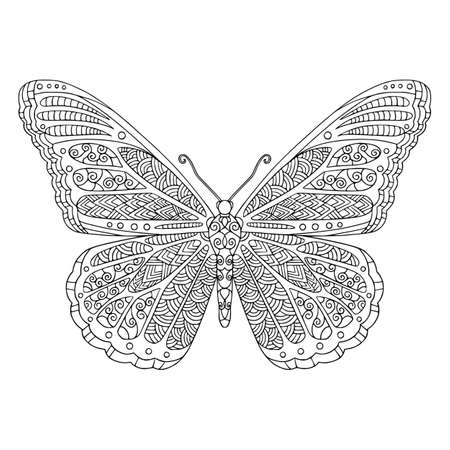 Tropical butterfly with decorated wings coloring page. Vector outline illustration with doodle elements for coloring book for adult. Lovely garden insect.