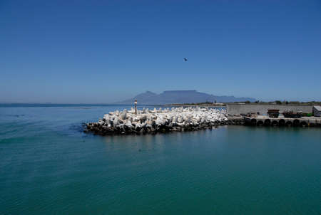 Jetty at Robben Island with Table Mountain in background, Robben Island, South Africa