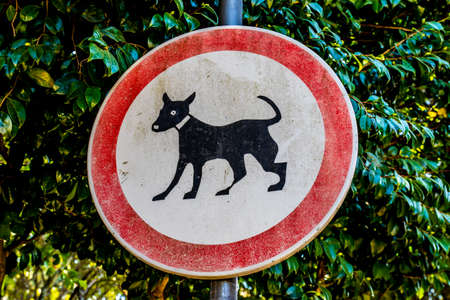No Cats allowed Banque d'images - 108870173