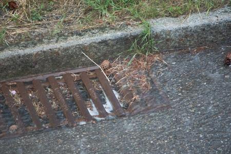 Heavy rain and the drain clogged