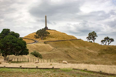 View on One Tree Hill monument monolith in Auckland. Sheep grazing in foreground. Dry grass. Foto de archivo