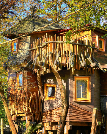 Beautiful tree house. A hotel high in the trees.