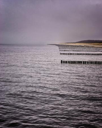 Groynes in the Baltic Sea near Zingst. Standard-Bild - 114116442