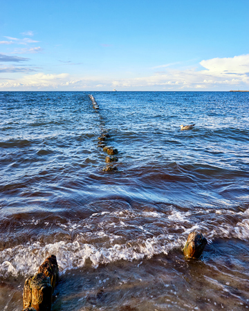 Seagulls are sitting on a groyne in the Baltic Sea. Mecklenburg-Vorpommern Standard-Bild - 115631099