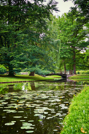 Water lilies in the canal with old bridge. As in fairy tales. Mecklenburg-Vorpommern, Germany