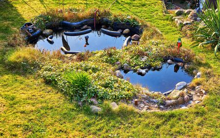 Pond in landscape design in a small garden as nature background. 版權商用圖片