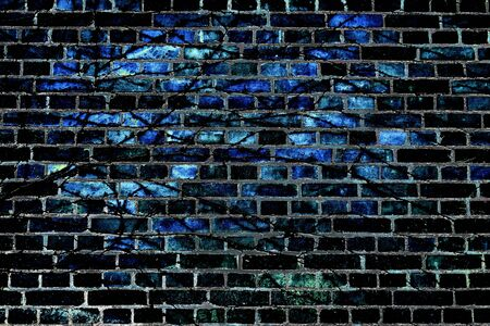Black and blue abstract background. Foliage on a brick wall. 版權商用圖片