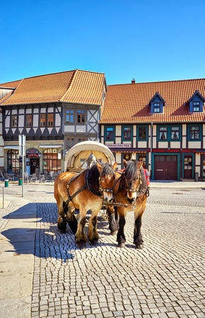Two brown horses with a carriage driving tourists. Center of the city Wernigerode. Saxony-Anhalt, Germany