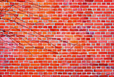 Red Brick wall background with leaves.