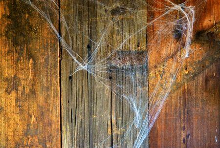 Cobweb on wood as Halloween background.