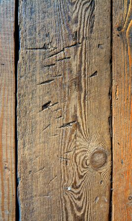 Vertical wooden planks as a natural background.