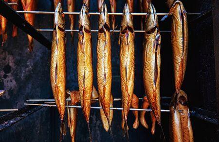 Whole mackerel freshly smoked as healthy food. Scomber Scombrus.