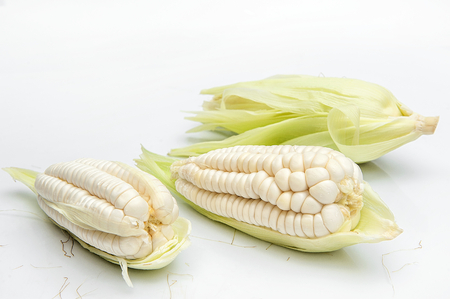 choclo, giant white corn peruvian food. On a white background