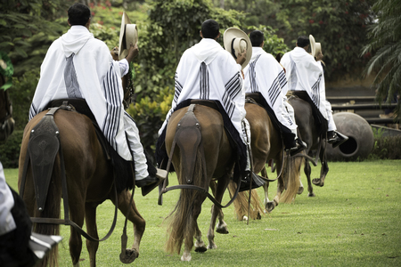 Demonstration of the Peruvian Paso horse mounted by his chalan. Peru