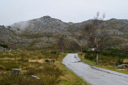 Road leading to the mountains. Green grass contrasting with yellow grass. Cloudy day. Freita mountain range. Portugal