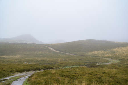 Path leading to the mountains. Green grass contrasting with yellow grass. Foggy day. Freita mountain range. Portugal