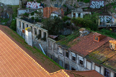 Ruins in Ribeira, with vegetation growing and graffiti. Seagull on the chimney. Porto, Portugal