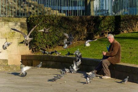 Porto, Portugal - 01/07/2020: Old man feeding bread to the pigeons and seagulls. Pigeons and seagulls flying around. Editorial