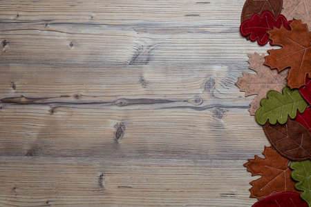 labeling: Wooden background with autumn leaves or foliage - Space for labeling