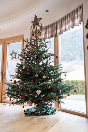 christmas tree xmas indoor home.