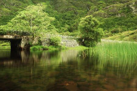 old bridge ireland tree quiet. Stock Photo
