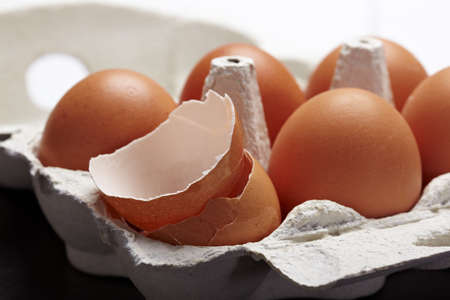 egg carton: One crushed egg in carton of eggs