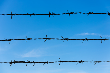 barbed wire frame: Barbed Wire