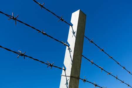 wire fence: Wire fence Stock Photo