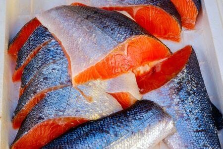 Raw Salmon In Foam Box in Tsukiji Market