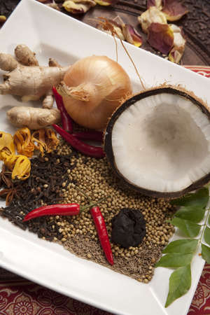 Traditional North Indian Curry Spices and Ingredients