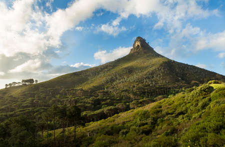 Lions Head, a part of the Table Mountain range, visible from Camps Bay Drive, in Cape Town, South Africa.