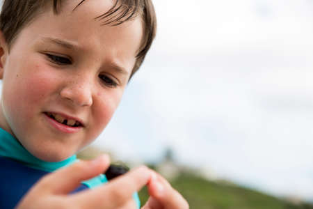 Little dung beetle found at beach by young boy