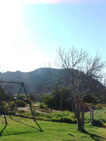 feigenbaum: Stil llife. Eine Schaukel und Feigenbaum auf dem Bauernhof in der Ceder Berg in der N�he von Clanwilliam, Western Cape, S�dafrika