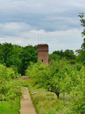 nice park with roman tower