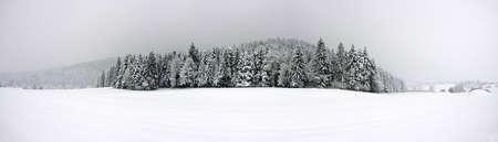 skying: Winter panorama XXL