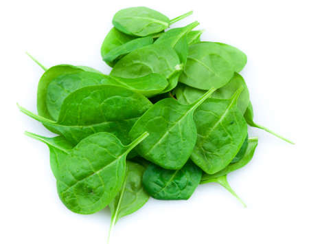 baby spinach: Baby spinach leaves