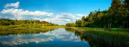 Paisaje con río y el bosque en el verano
